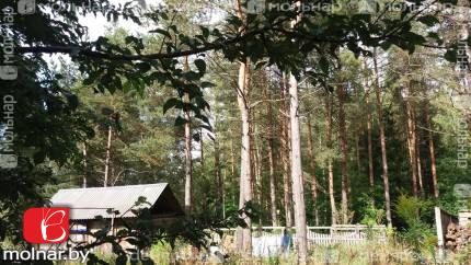 квартира 2 комнаты по адресу Ждановичи, , 29  Продается 2-х комнатная квартира